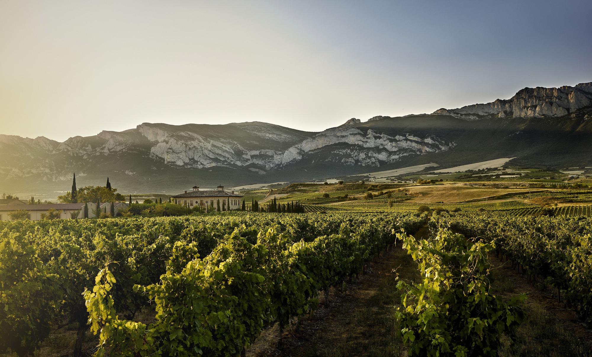 A weekend break in Spain's winegrowing heartland